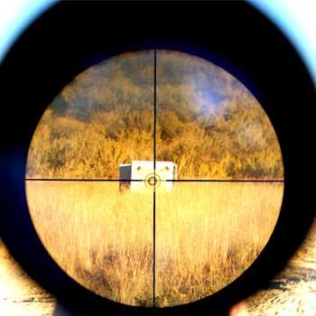 scope magnification zoom range