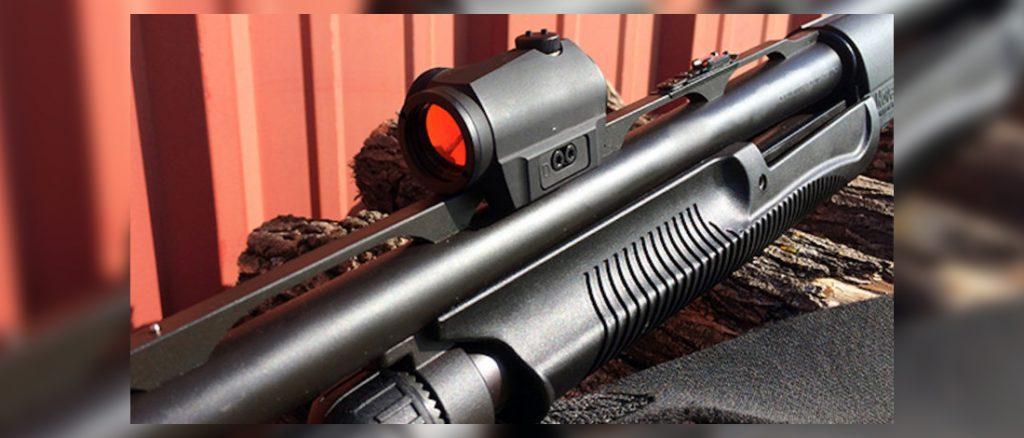 Best Red Dot for Shotgun