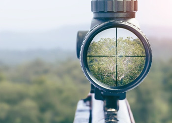 Choose The Scope Reticles